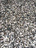 Pebble And Shell Mix