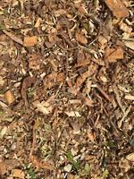 Wood Chip (Tree Mulch)