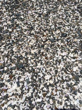Pebble And Shell Mix Chips Amp Aggregates Decorative