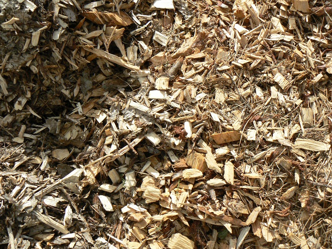 Tree Mulch w s